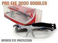 125_pro-eye-3000-page-hr.jpg