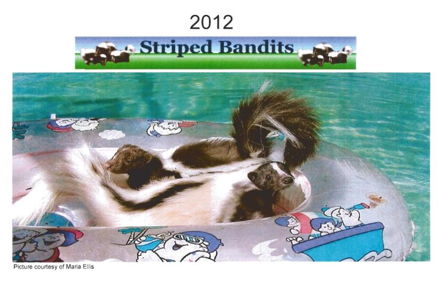 2012 Skunk Calendar