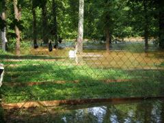 flood023.jpg