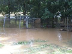 flood027.jpg