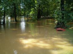 flood018.jpg