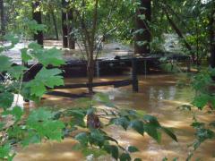flood026.jpg