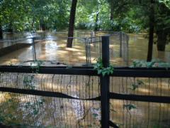 flood033.jpg