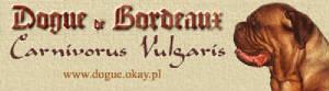 carnivorus_vulgaris_banner2.jpg