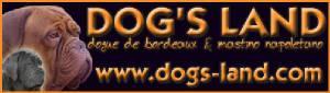 dogsland_banner.jpg