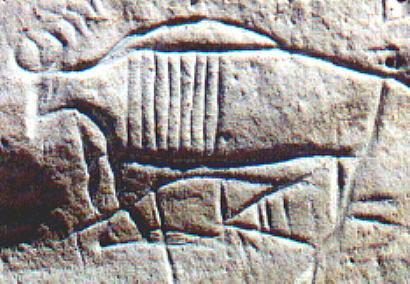 wy_yosemite_bpbuffo_petroglyph.jpg